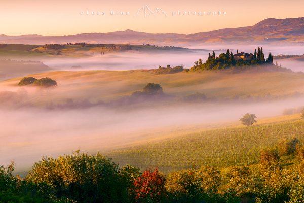 Podere Belvedere, val d'Orcia, alba con nebbia