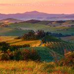 Podere Belvedere all'alba colline Toscane della val d'Orcia e campi di papaveri e luce calda