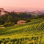 I vigneti delle langhe, note colline piemontesi e il castello di Castiglione Falletto