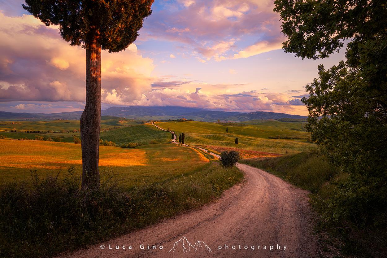 La strada del gladiatore, agriturismo Terrapille al tramonto, val dorcia, Pienza