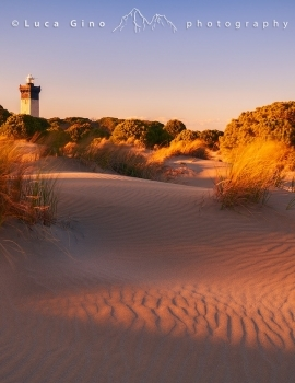 L'Espiguette, la spiaggia di dune e il faro