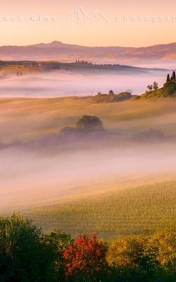Il Podere Belbedere, l'alba e la nebbia
