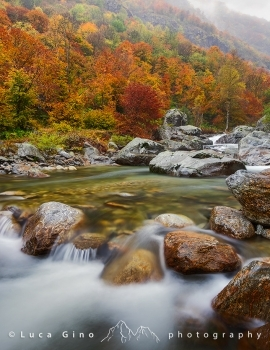 Autunno in valle Gesso