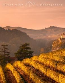 Il castello di Barolo in autunno