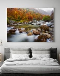 Il torrente gesso in autunno