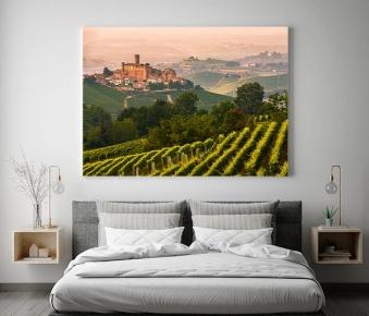 Castiglione falletto, il castello e i vigneti