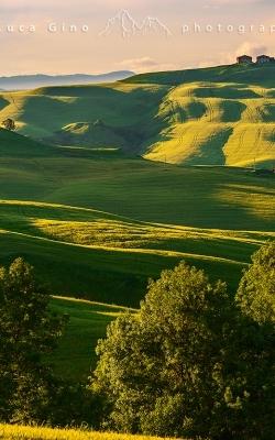 Crete Senesi, colline e casali toscani