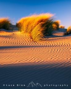 La spiaggia dell'Espiguette al tramonto