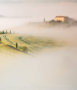Alba nebbiosa in val d'Orcia