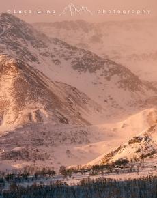 Dettagli invernali in valle Po