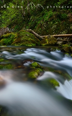 Green waterfall – La verde cascata di Gias Fontana
