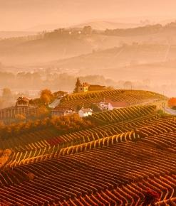 La collina dei Cannubi di Barolo in autunno