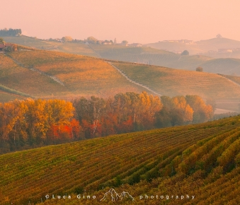 Le terre del Barolo in autunno