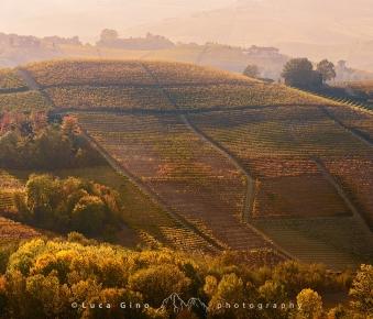 Le colline delle Langhe in autunno