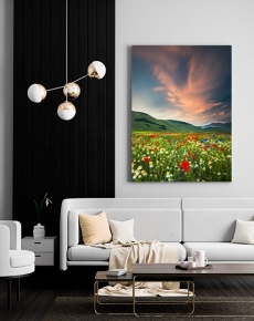 La fioritura e l'Italia di Castelluccio