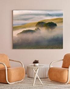 Gli alberi e le Nebbie della Val d'Orcia